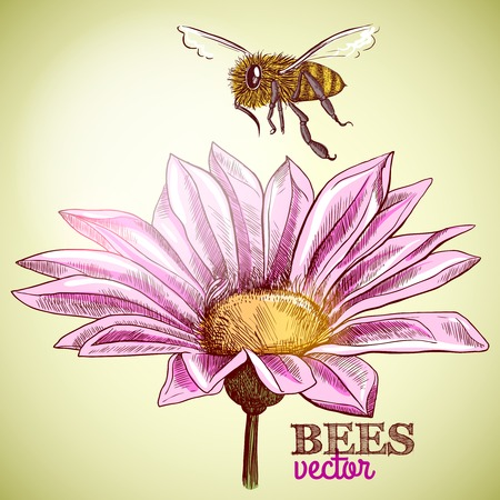 Flying honey bee and blossoming flower background illustration Vector