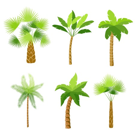 Decorative palm trees icons set isolated illustration Иллюстрация