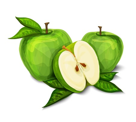 Green natural organic sweet apple fruit sliced in half with seeds and leaves isolated hand drawn sketch illustration