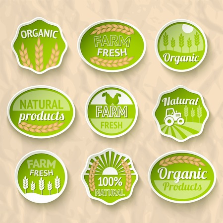 Farming harvesting and agriculture stickers set of natural organic fruits and vegetables  Illustration