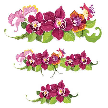 lei: Colorful tropical summer flower garland decorative elements pattern background   Illustration