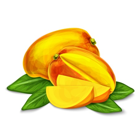 passion ecology: Natural organic sweet cut and sliced mango tropical fruit decorative poster or emblem isolated illustration