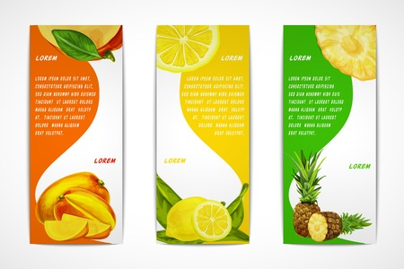 Natural organic tropical fruits vertical banners set of mango lemon pineapple design template illustration Vector