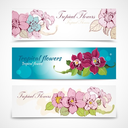Colorful tropical hand drawn and sketch exotic flower decorative banners isolated illustration Vector