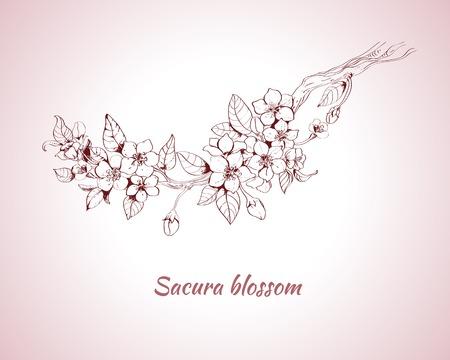 Sakura blossom impression décorative sur fond rose croquis illustration Vecteurs