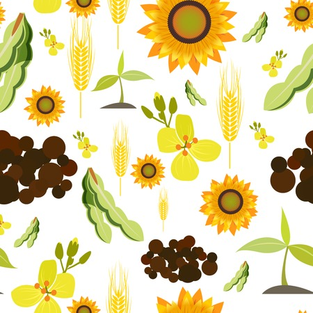 canola: Agriculture farming organic food plant wheat sunflower seamless pattern vector illustration