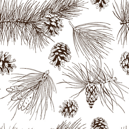 pine nuts: Pine fir christmas tree cedar spruce and cones seamless pattern vector illustration