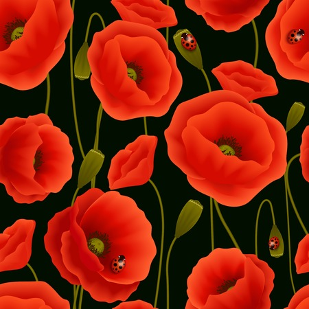 poppy seed: Romantic floral seamless pattern of poppy flowers and ladybirds vector illustration