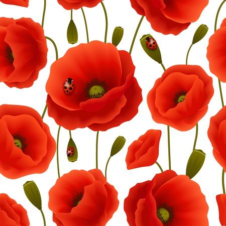 poppy field: Vibrante patr�n floral sin fisuras de flores de amapola y de flores con la ilustraci�n vectorial p�jaros de la se�ora