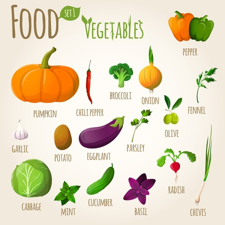 potato plant: Food vegetables doodle set of pepper pumpkin broccoli onion fennel garlic vector illustration Illustration