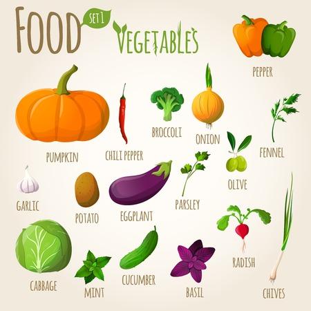 Food vegetables doodle set of pepper pumpkin broccoli onion fennel garlic vector illustration Illustration