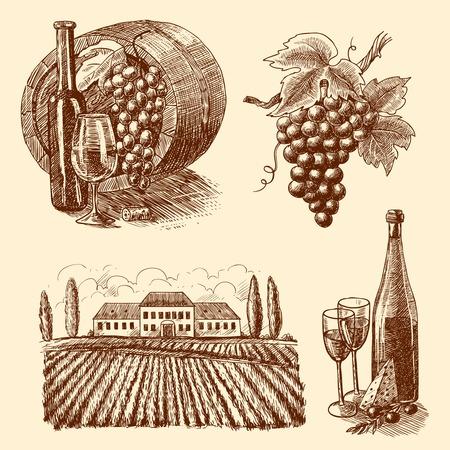 kaas: Wijn vintage schets decoratieve iconen set van geïsoleerde vat druiventak wijnmakerij vectorillustratie