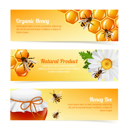 Honey bee organic natural product banners with daisy and honeycomb elements vector illustration.