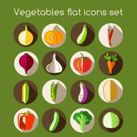 Vegetable organic food flat icons set of onion pumpkin pepper garlic vector illustration Vector