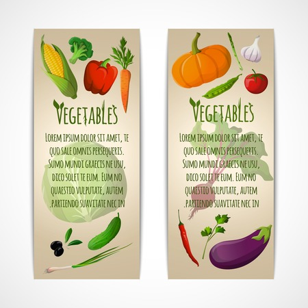 Food vegetables doodle vertical banners set of corn pepper broccoli carrot olive vector illustration Vector