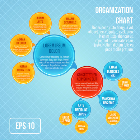 Organizational chart infographic business bubbles circle work structure vector illustration Vector