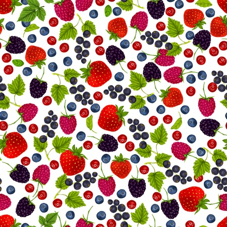 currant: Natural organic berries seamless pattern with blueberry black currant cowberry vector illustration