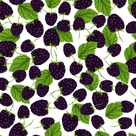 Natural fresh organic garden blackberry seamless pattern vector illustration
