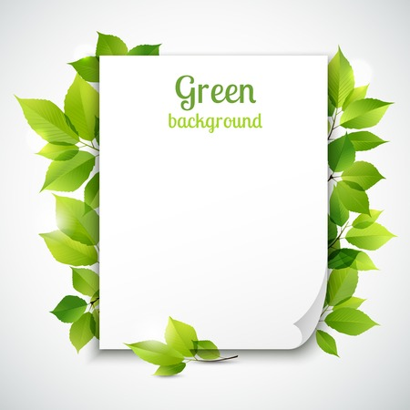 新鮮な春の緑の草の葉フレーム テンプレート ベクトル イラストの空白のシート ペーパーをカーリング