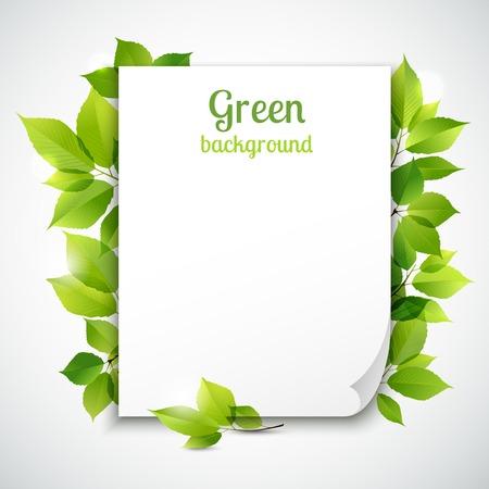 green frame: Fresh spring green grass leaves frame template with curling  blank sheet paper design vector illustration Illustration