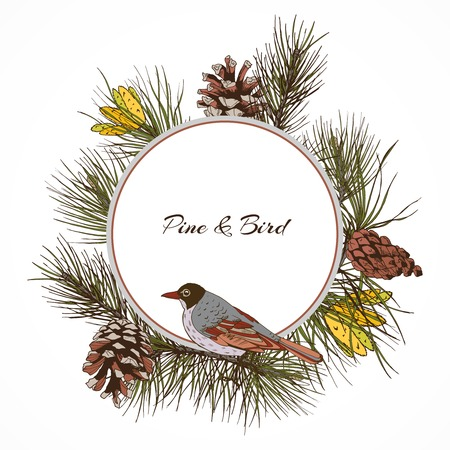 pine nut: Colored pine branches label with cones frame and sitting bird vector illustration
