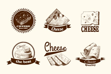 cheddar cheese: Cheddar parmesan and smoked cheese slices chunks and blocks assortment doodle icons set vector illustration
