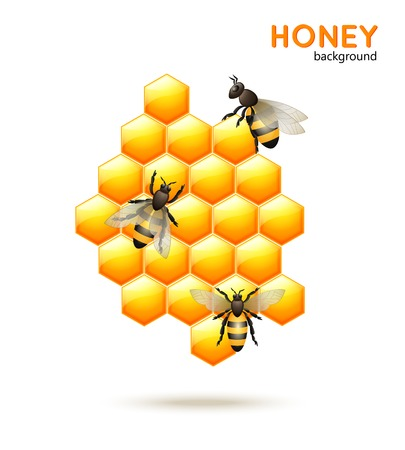 Sweet honey comb with bees workers background vector illustration Illustration