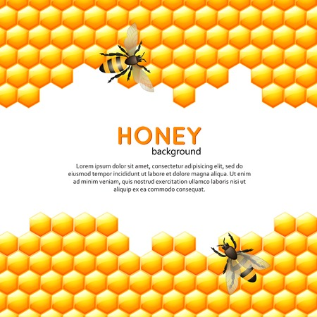 Flying bees with sweet honey comb ornate background vector illustration
