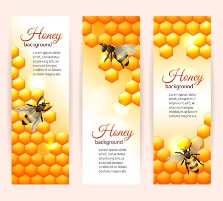 honey comb: Honey bee on comb background vertical banners set isolated vector illustration