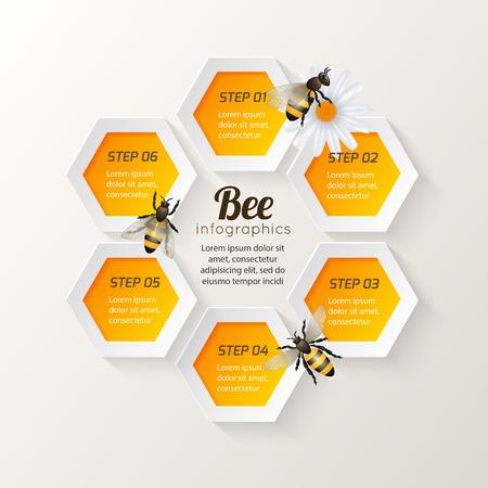 Honey bee op daisy en kam achtergrond zeshoek stappen infographic vector illustratie