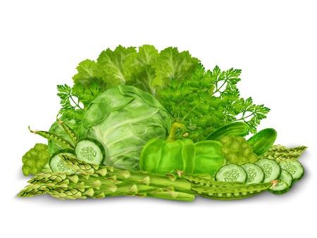 cucumber salad: Ensalada vegetal de mezcla de alimentos org�nicos pepino esp�rragos todav�a vida aislada en el fondo blanco ilustraci�n vectorial