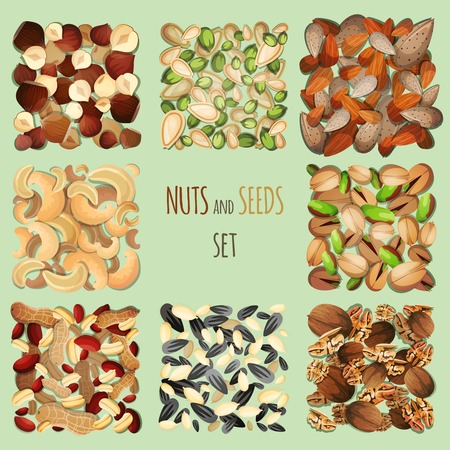 cashew nuts: Nuts and seeds mix decorative elements set vector illustration