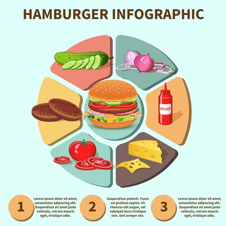 Hamburger sandwich with meat cheese tomato lettuce bun cucumber pie chart infographic vector illustration Illustration