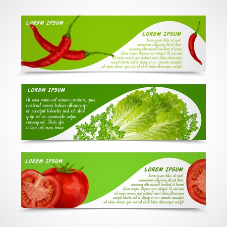 Vegetable organic food banners horizontal with chili pepper salad tomato isolated vector illustration Vector