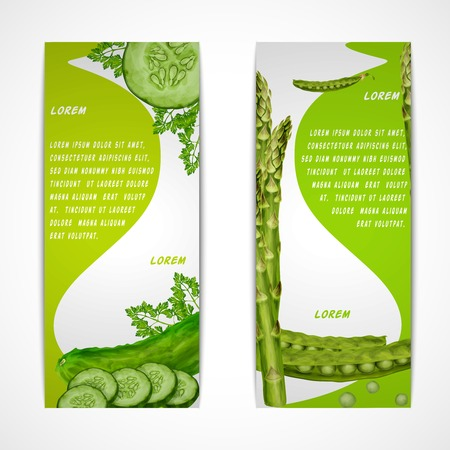 summer diet: Green vegetable organic food vertical banners set with parsley peas cucumber isolated vector illustration