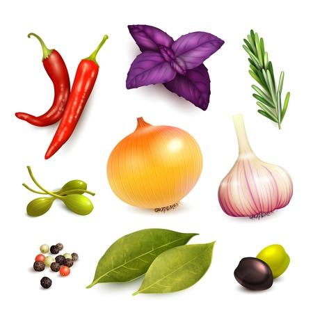 alcaparras: Hierbas y especias elementos decorativos que figuran en aislado ajo cebolla romero ilustración vectorial Vectores
