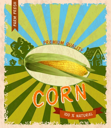 corn stalk: Retro vintage premium quality natural corn stalk advertising poster vector illustration