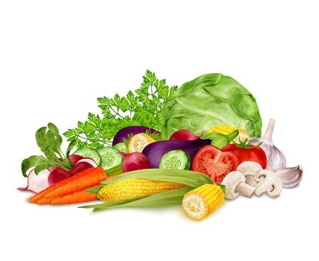 Verduras frescas conjunto de alimentos orgánicos todavía vida aislada en el fondo blanco ilustración vectorial. Ilustración de vector