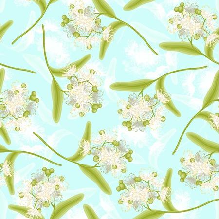 linden tree: Blossoming linden summer flowers seamless pattern vector illustration