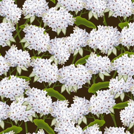 blossom honey: Blossoming aromatic buckwheat summer tree flowers seamless background vector illustration