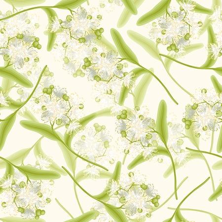 linden: Blossoming aromatic linden summer flowers seamless background vector illustration Illustration