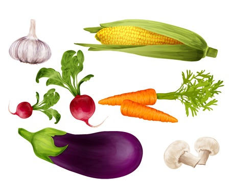 Green vegetable organic food realistic set with garlic maize carrot isolated vector illustration.