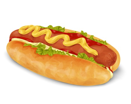 hot dog: Realistic hot dog fast food isolated on white background vector illustration