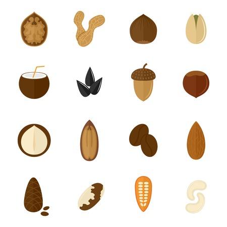 Set van amandel hazelnoot kokosnoot zonnebloempitten en noten in vlakke stijl vector illustratie