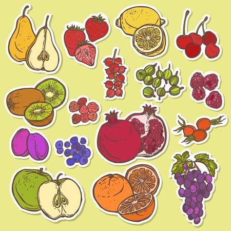 grosella: Frutas y bayas orgánicas Iconos naturales establecidos de aislado de ciruela granada cereza ilustración vectorial