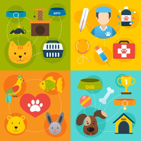 veterinary: Veterinary pet food and health care infographic flat isolated vector illustration