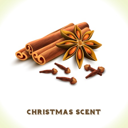 Christmas scent cinnamon anise cloves spices set isolated on white background vector illustration Illustration