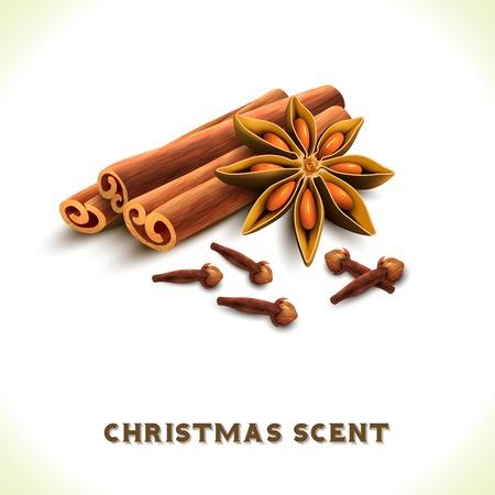 christmas scent: Olor Navidad dientes an�s canela especias conjunto aislado sobre fondo blanco ilustraci�n vectorial