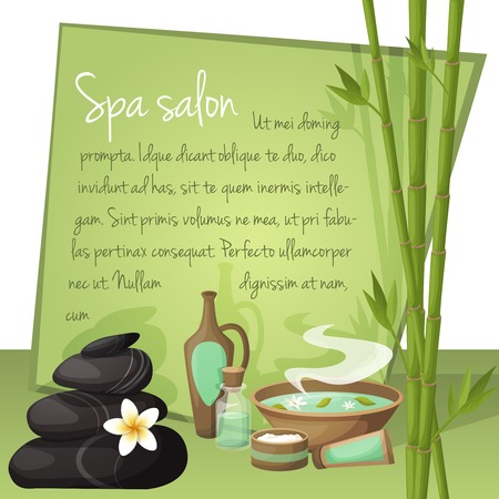 spa salon: Spa salon background with frame and natural health products vector illustration