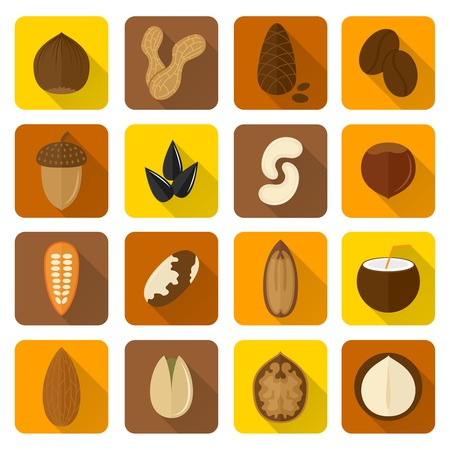 Nuts icons set with walnut hazelnut pistachio isolated vector illustration